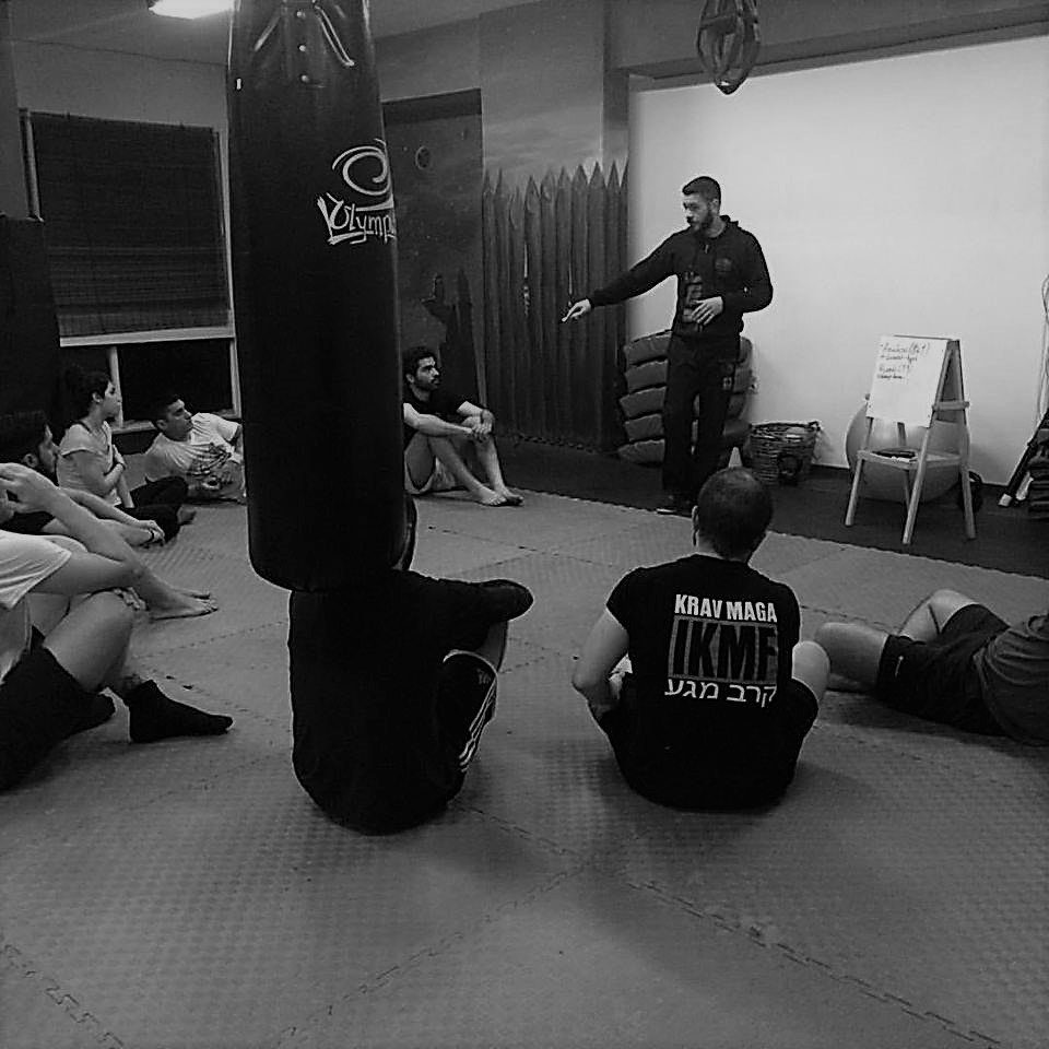 vlasis.teachingkravmaga.freeminds.gr