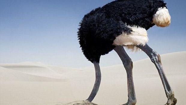 Ο φόβος της στρουθοκαμήλου
